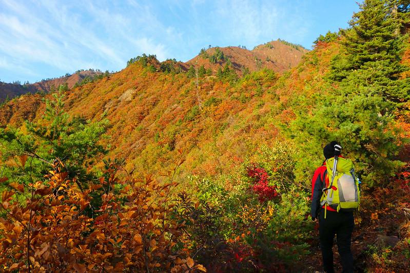 20141018-平ヶ岳-0079.jpg