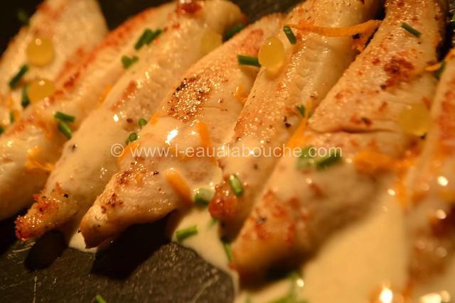 Filets de Perche Sauce au Champagne  © Ana Luthi Tous droits réservés 029