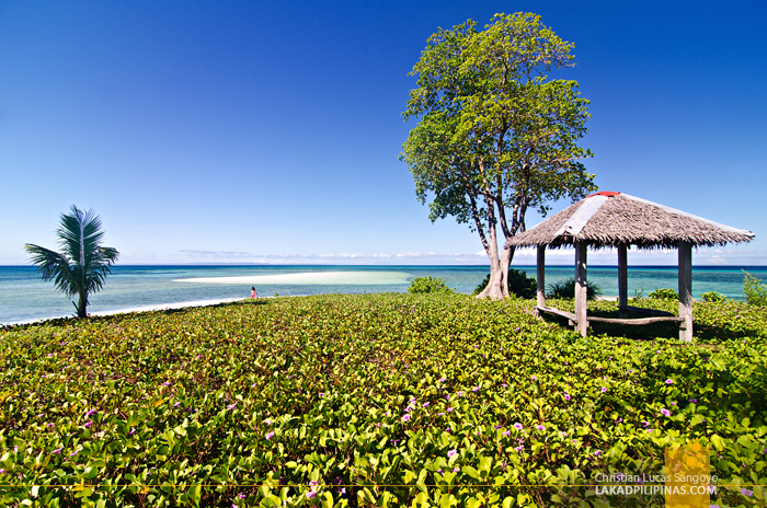 Kalanggaman Island Palompon Leyte Sandbar