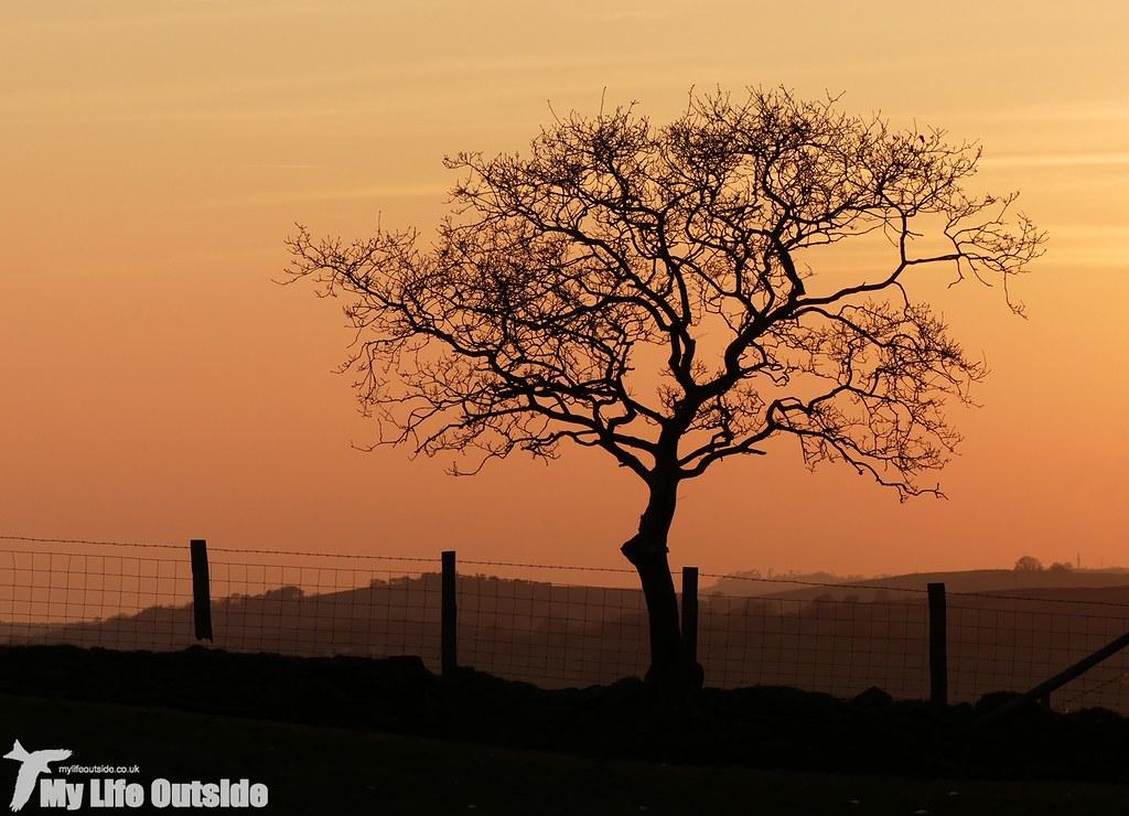 P1000550 - Sunset