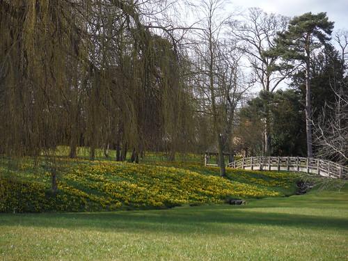 Dinton Hall's Park