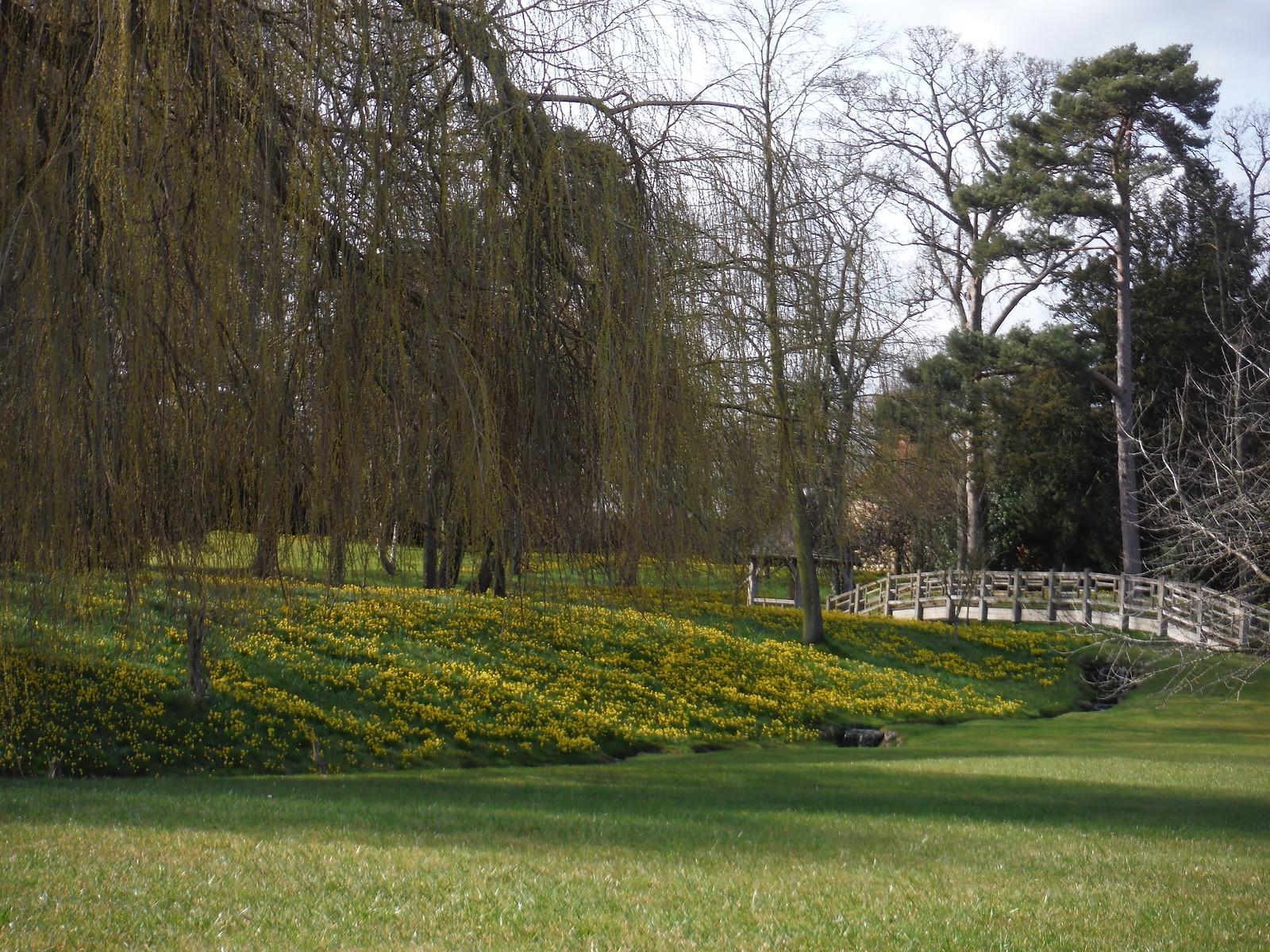 Dinton Hall's Park SWC Walk 193 Haddenham to Aylesbury (via Gibraltar and Ford)