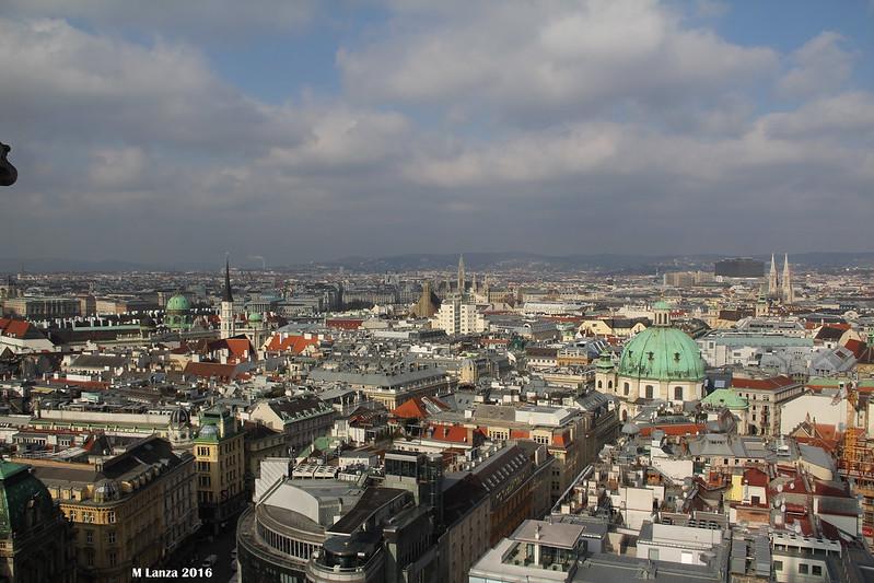 Vienna Morning From Stephansdom