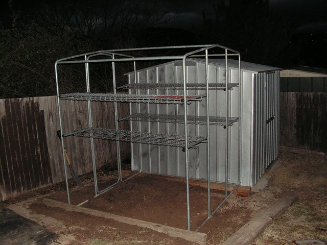 My first proper greenhouse - June 2009