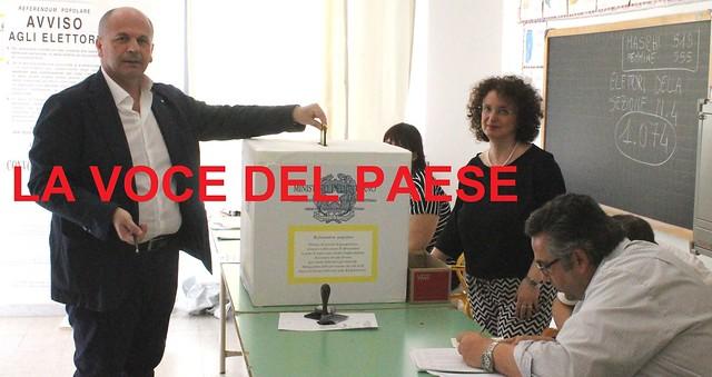domenico vitto referendum
