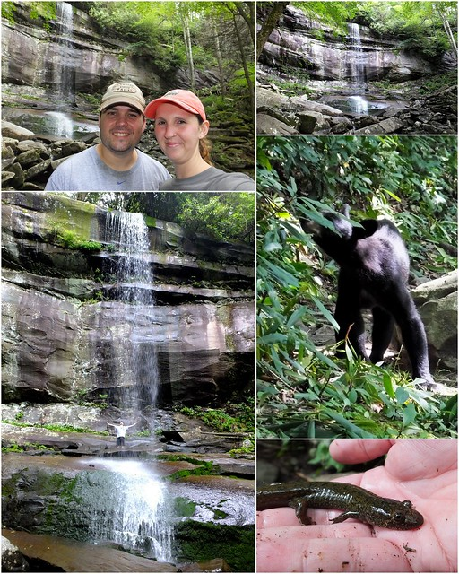 rainbow falls collage