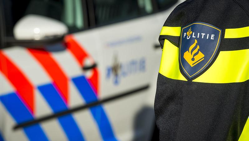 Koi gestolen in Winterswijk