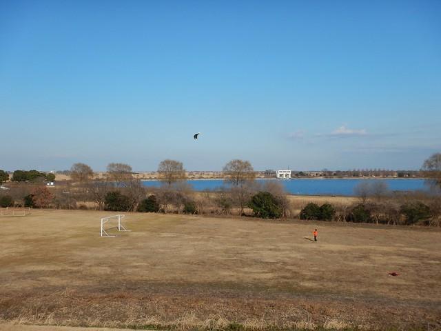 2016年 1月11日 渡良瀬遊水地 ランドカイト練習