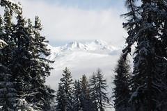ski_281