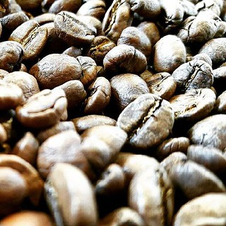 Another batch of Costa Rica La Union Yellow Honey just came out of the roaster. Come get it! #singleorigin #coffeebeans #caffedbolla #slc #coffee #roaster