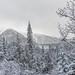 20160413 Gite du Mont Albert and area, Parc National de la Gaspésie (3)