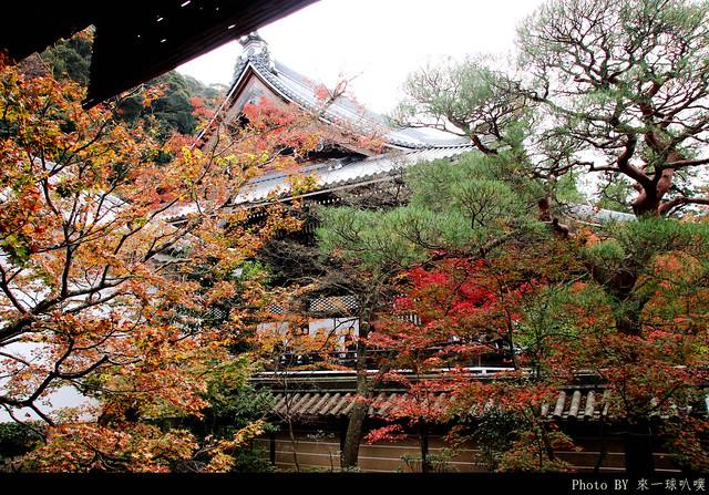 京都-永觀堂109