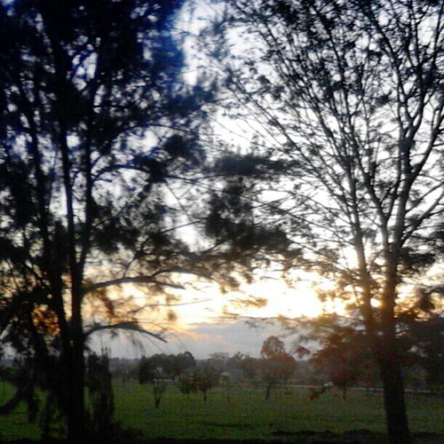 sunset uploaded:by=flickstagram kenya365 thikatweeps instagram:photo=345564943326439716227669921 instagram:venuename=thikaflyover instagram:venue=51523998 thikaflyover kenya365filtered