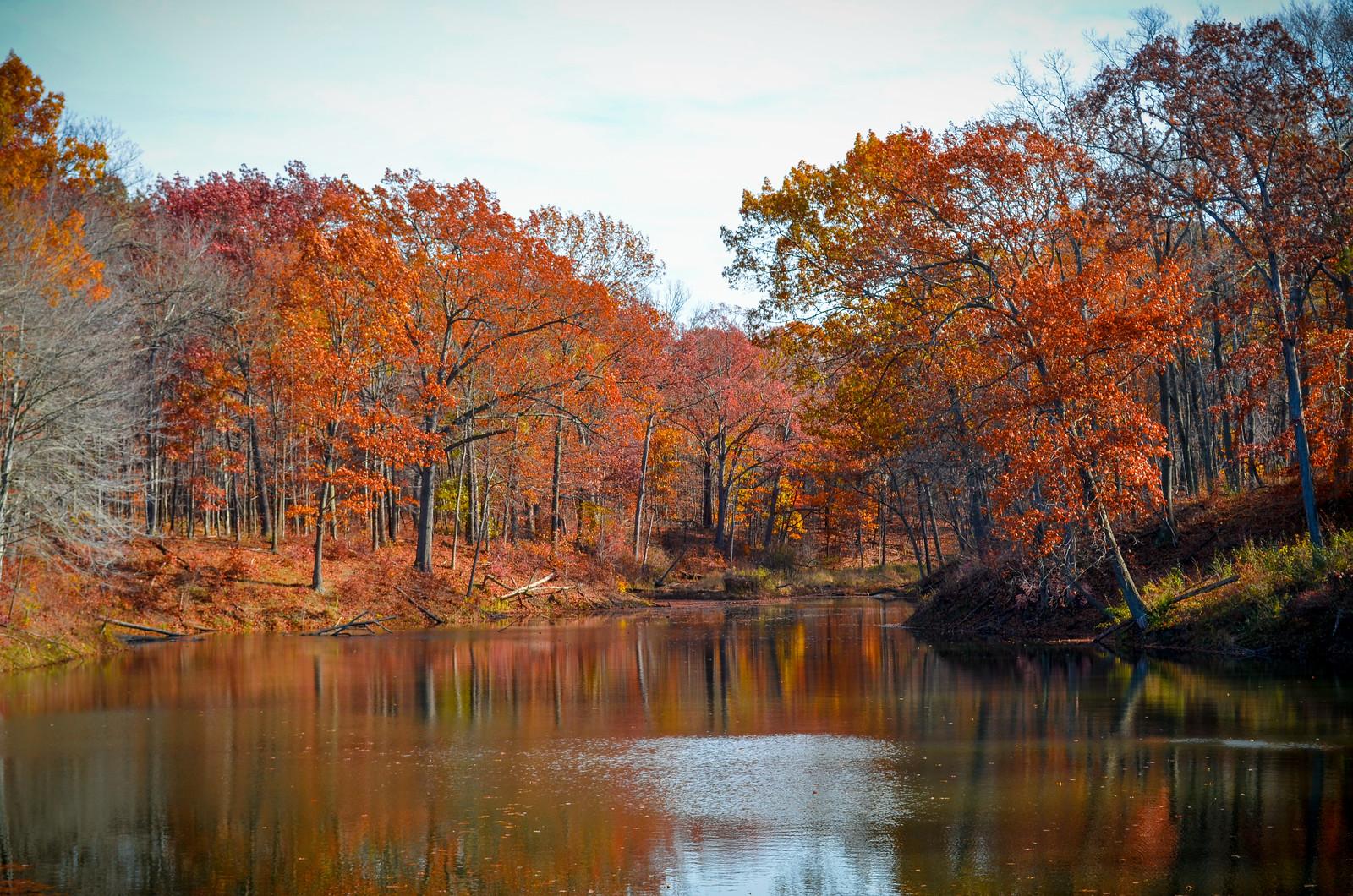 Armington Pond, CVNP