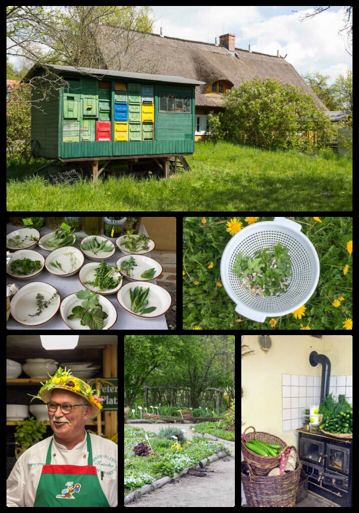 Gurkensalat mit Wildkräuter via lunchforone.de