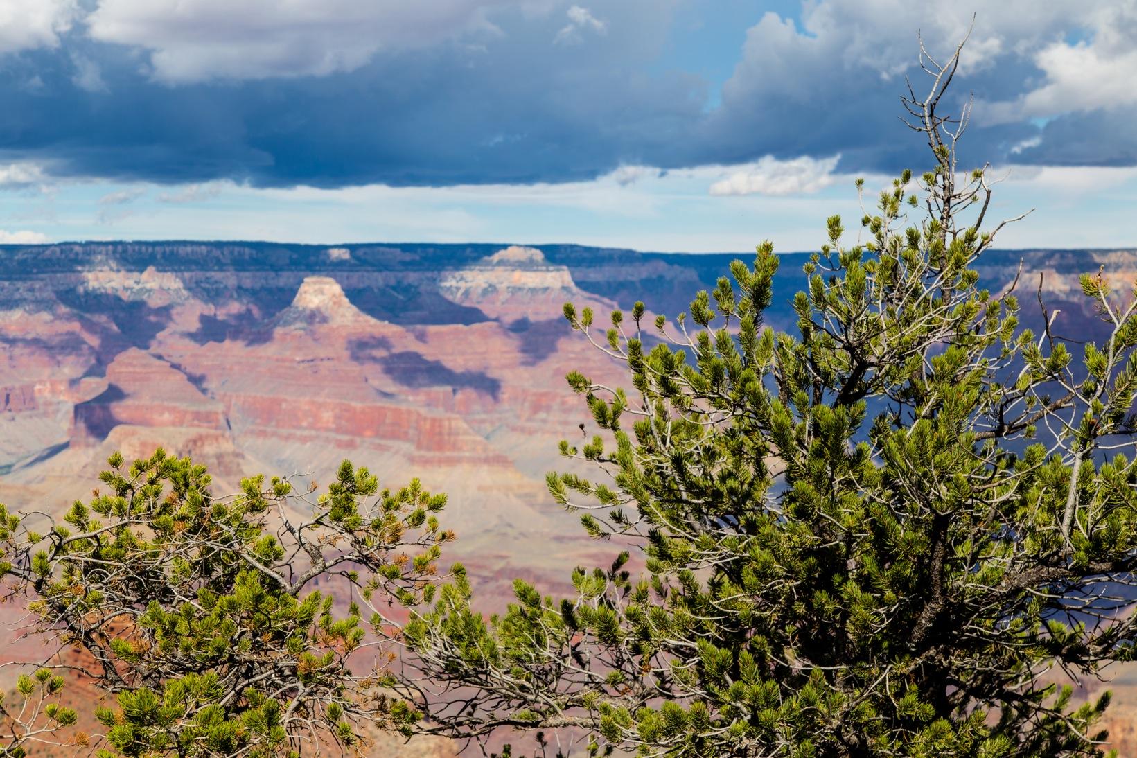 Grand Canyon 2014-5447