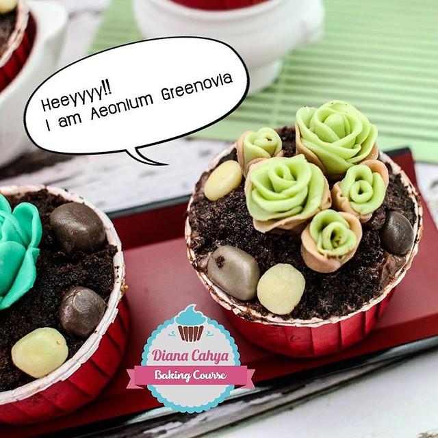 Heeyyyy!! I am Aeonium Greenovia..  #Succulent #EcheveriaGoldenGlow #Cupcakes #Chocolate100% #NoFondant #Edible #DianaCahya #BakingTutorial #BakingClass #DianaCahyaBakingCourse #DeliciousChocolate #DeliciousChocoSucculentCupcake  #Succulent #EcheveriaGold