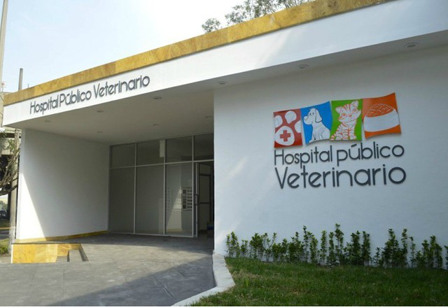hospital-público-veterinario