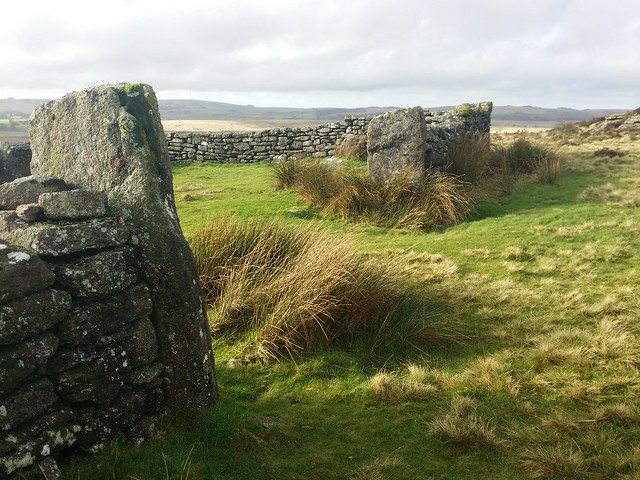 Laughter Tor Sheep Fold