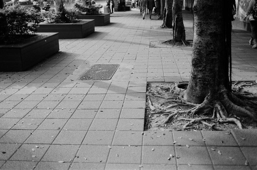 忠孝國小 / Kodak 400TX / Nikon FM2 拍拍看影子。  Nikon FM2 Nikon AI AF Nikkor 35mm F/2D Kodak TRI-X 400 / 400TX 2940-0028 2015/11/07 Photo by Toomore