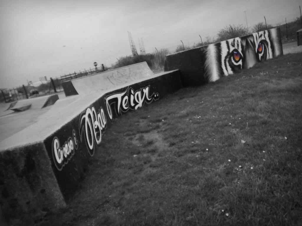 Peaceful Progress art in Cardiff Bay skatepark