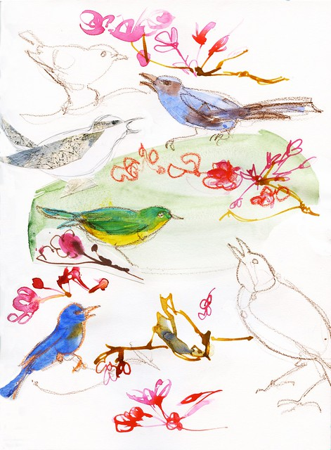 Journal: bird studies for illustration