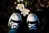 Sun + flowers + chucks = love