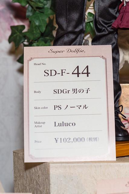 HTドルパ京都13 フルチョイスワンオフ SD F-44