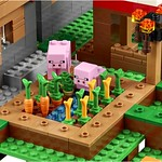 LEGO Minecraft 21128 The Village 10
