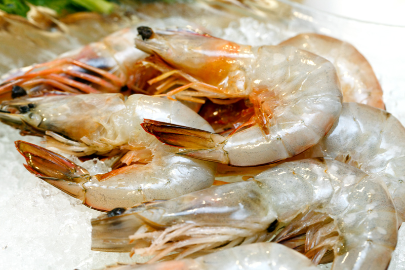 Gourmet Definition Fresh Sea Prawns