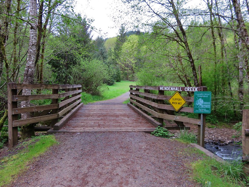 Footbridge over Mendenhall Creek