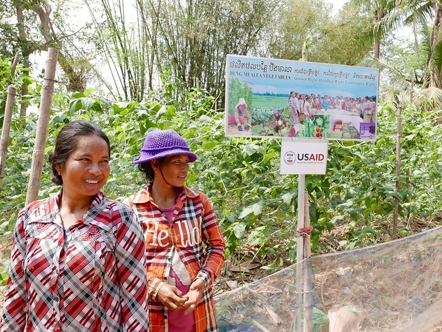 women farmers using conservation agriculture to grow vegetables in Cambodia, with USAID funding