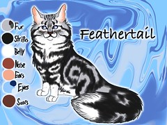 Feathertail of RiverClan3