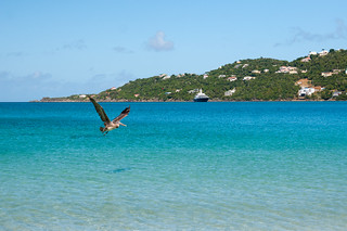 Image of Magens Bay Beach. vi stthomas virginislands usvi stt