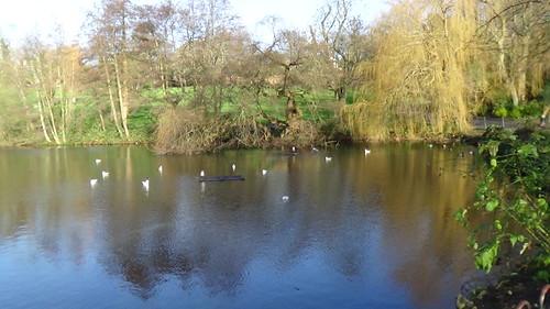 Waterlow Park, Highgate Dec 15 (6)