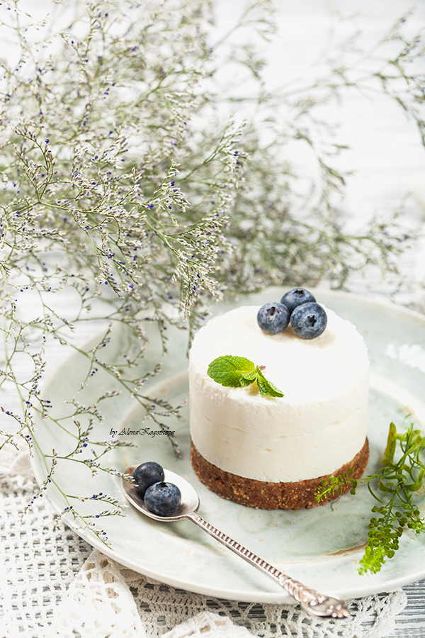 Healthy Yogurt Panna Cotta