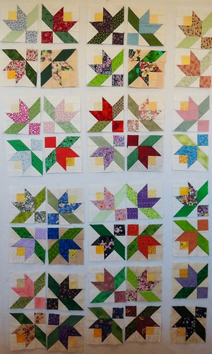 20 Summer Vine Blocks