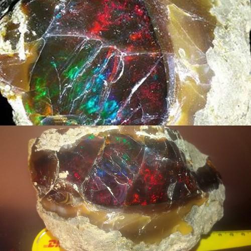💥❤️💛💚💥1,100 Gram Welo Ethiopia Opal Rough Piece.
