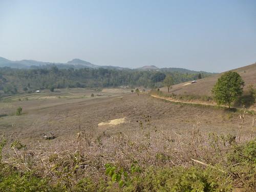 M16-Kyaukme-Palaung-Lwe Sar (2)