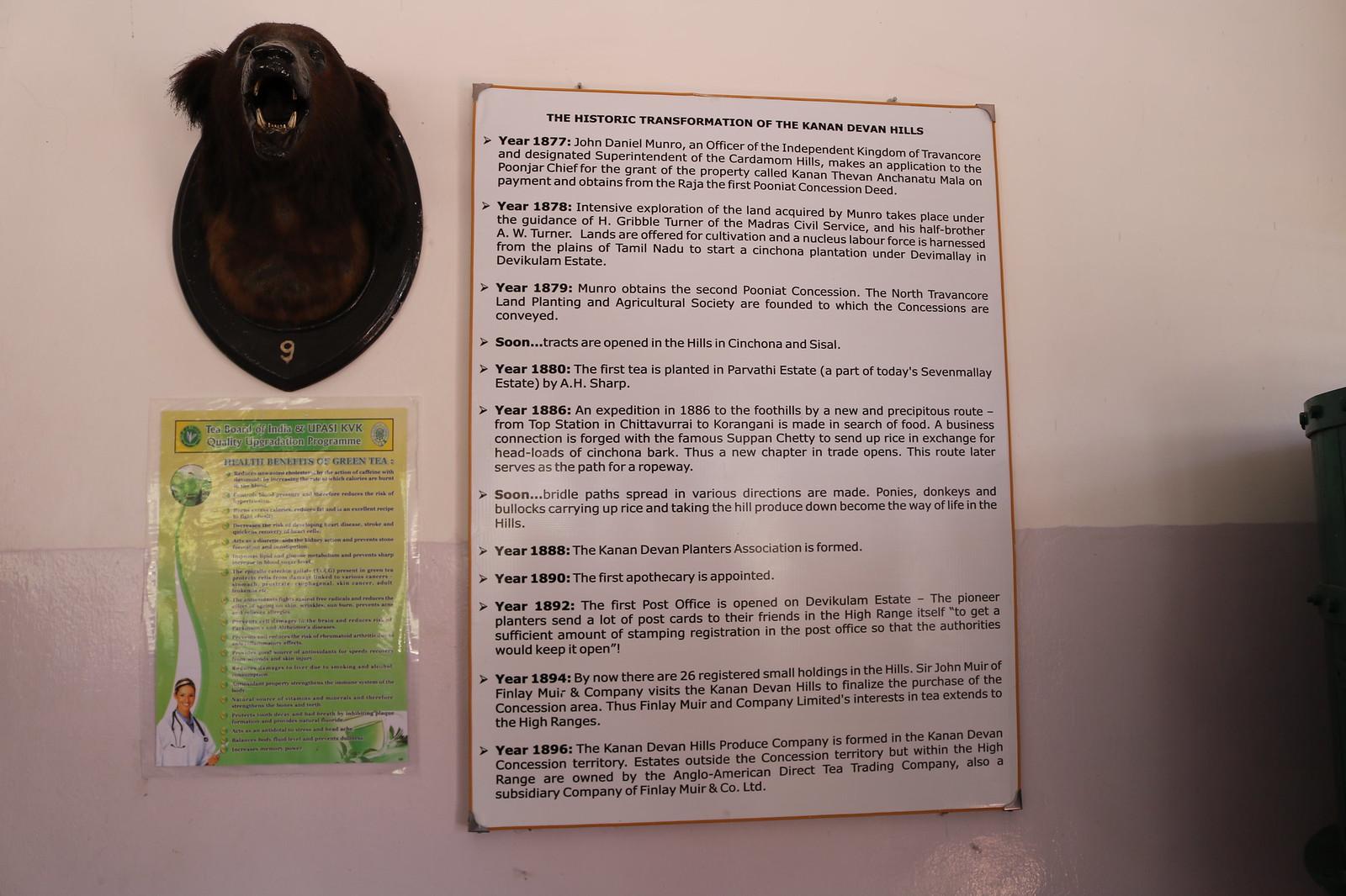 Tea Museum - 3