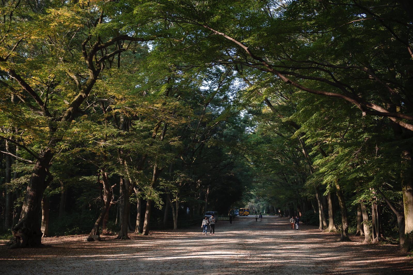 2015VQ@Kyoto-638