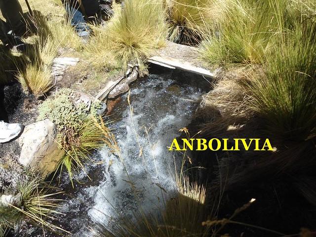 EMPRESAS CHILENAS CANALIZARON LOS OJOS DE AGUA PARA INCREMENTAR EL CAUDAL DEL MANANTIAL SILALA