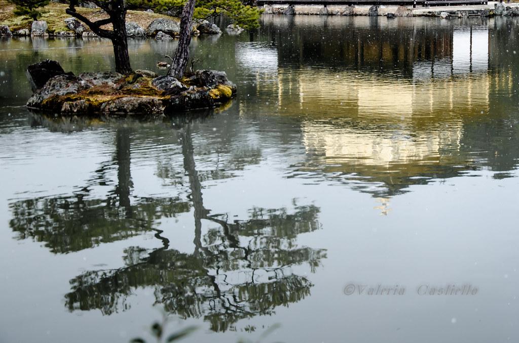 Kinkaku-ji reflections