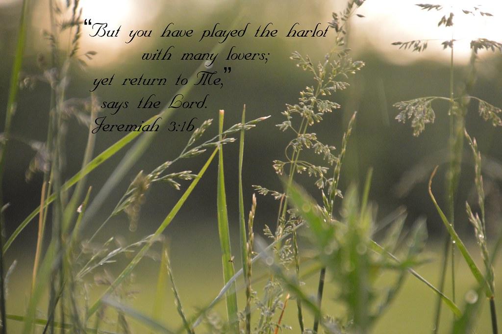 Jeremiah 3:1b