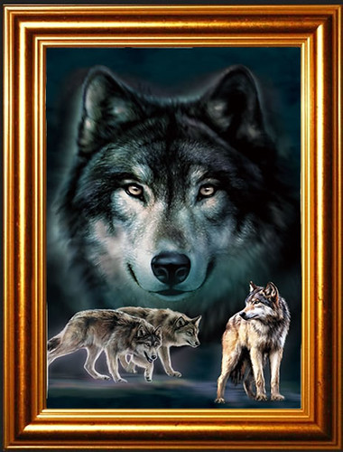 Wolf Love Lenticular 3d Picture Animal Poster Painting
