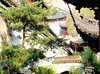 A courtyard inside the Yuyuan Gardens