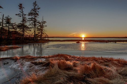 sunset color ice water landscape nikon acadianationalpark nikond810 140240mmf28