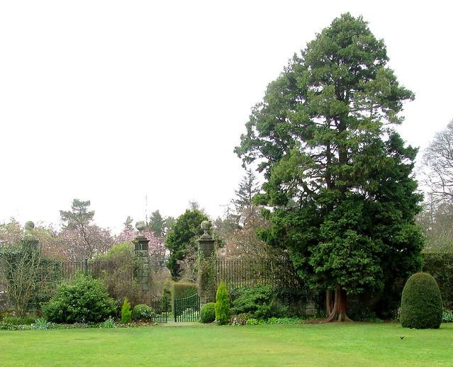 Greenbank Gardens 5