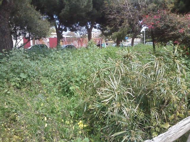 Degrado Reggio Calabria