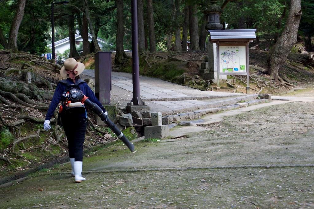 Nara Park_12